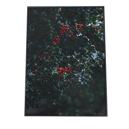 ポスター A2サイズ(約42x59cm) 選べる用紙 大きさ ポスター インテリア おしゃれ ファッション ポスター 大きい 韓国 ヒイラギ リース 雪 冬 結晶 北欧 クリスマス アート フォト 写真 もみの木 観葉植物 ナチュラル 植物 飾り