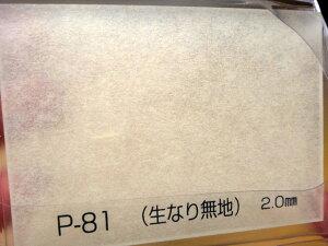 アクリワーロン 生なり無地 P-81 2mm厚 910×1820mm 1枚