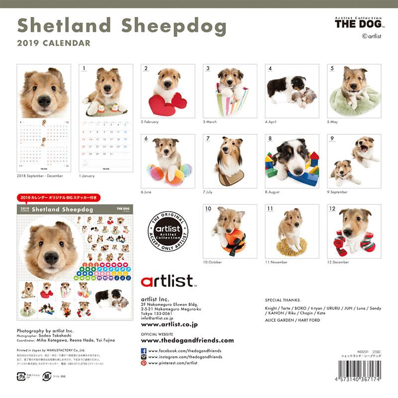【あす楽】THE DOG 2019年 カレンダー シェットランドシープドッグ