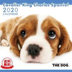 THE DOG 2020年 カレンダー キャバリア キング チャールズ スパニエル[犬/ドッグ/ペット/calendar/令和/壁掛け][interzoo clinicclub]