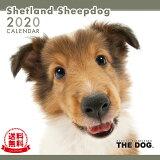 【送料無料】THE DOG 2020年 カレンダー シェットランドシープドッグ[犬/ドッグ/ペット/calendar/令和/壁掛け]