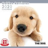 【送料無料】THE DOG 2020年 カレンダー ゴールデンレトリーバー[犬/ドッグ/ペット/calendar/令和/壁掛け]