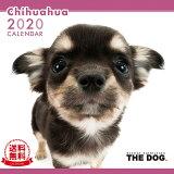 【送料無料】THE DOG 2020年 カレンダー チワワ[犬/ドッグ/ペット/calendar/令和/壁掛け]