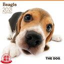 【送料無料】THE DOG 2021年 カレンダー ビーグル[犬/ドッグ/ペット/calendar/令和/壁掛け] その1