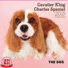THE DOG 2021年 カレンダー キャバリア キング チャールズ スパニエル[犬/ドッグ/ペット/calendar/令和/壁掛け][interzoo clinicclub]