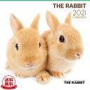 【送料無料】THE RABBIT(ラビット) 2021年 カレンダー[うさぎ/ウサギ/兎/ペット/calendar/令和/...
