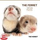 【送料無料】THE FERRET(フェレット) 2021年 カレンダー[動物/ペット/calendar/令和/壁掛け]