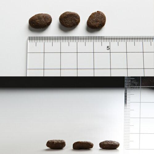 【30%OFF】Orijen オリジン シニア 2kg×2袋【オリジンランクアップキャンペーン】[肉の日/セール/犬/総合栄養食/プレミアムフード]