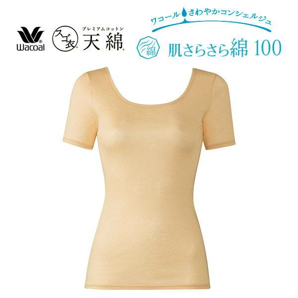 インナー・下着, インナーシャツ 25OFF 100 LL CLC270
