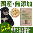 グリーンプラスドライタイプビーフ味/全犬用1kg入