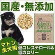 グリーンプラスドライタイプマトン味/全犬用1kg入