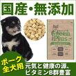 グリーンプラスドライタイプポーク味/全犬用1kg入