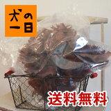 【九州産 鶏とさか 1kg】ヒアルロン酸たっぷり!【送料無料】【犬 おやつ】【歯のお手入れに】【国産無添加・手作り】【smtb-MS】