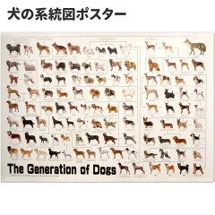 犬の系統図 ドッグジェネレーション ポスター 改定版【あす楽】[犬屋楽天市場店]