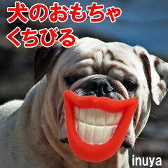 愛犬 記念撮影 ウケる 笑える変顔 犬 おもちゃ くちびる おもしろグッズ