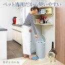 猫のトイレの砂の量は 砂で遊ぶネコの対策 おすすめの捨て方は いけいけ イロハ道