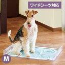 クリアレット2(M) (ワイドシーツサイズ) [犬 トイレ おしゃれ 透明 ドッグ アクリル デザイナーズ]