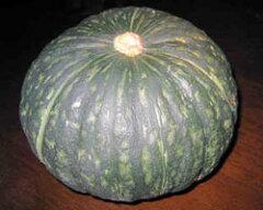 ホクホク甘?い!北海道のかぼちゃ9月上旬発送開始!美瑛・富良野産 かぼちゃ 3玉