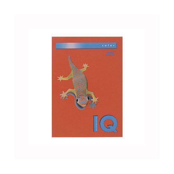 (業務用セット) 伊東屋 バイオトップカラー A4判 500枚入 80g/m2 BT519 ブリックレッド 【×2セット】 送料込!