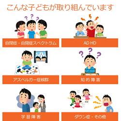 発達障害ADHD ソーシャルスキル後編4巻 SSTトレーニングフラッシュカードDVD教材
