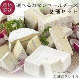 【3月1日は店内全品ポイント10倍!】 北海道カマンベールチーズの老舗 選べる生カマンベールチーズ2種セット (カレ・ロワレ・おいこみブルー) 北海道 お取り寄せ チーズ ギフト 内祝い 【送料無料】