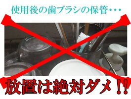 HABSHANハブシャン歯ブラシシャンプー歯ブラシ洗浄汚れ菌ケア綺麗臭い匂いにおいニオイ保存液手入れ