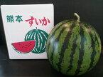 熊本県産 植木すいか Mサイズ(1玉入約5kg)