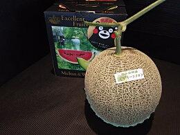 肥後グリーンメロン5Lサイズ(2玉入2kg)