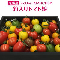 プレゼントギフト九州産iroDoriMARCHEの箱入りトマト娘800g
