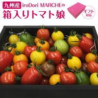 【クール便】九州産iroDoriMARCHEの箱入りトマト娘通常版800gギフト版600gカラフルトマト産地直送