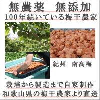 無添加熊野のご褒美紀州南高梅山みつ漬1kg無化学肥料無農薬