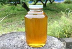 天然はちみつ和歌山 奥熊野山蜜 2400g日本ミツバチ天然蜂蜜(ハチミツ)国産 日本産彩り屋_