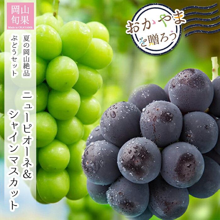 フルーツ・果物, ブドウ  20218 1 1kg ()