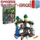 レゴ(LEGO) マインクラフト 21169 最初の冒険 知育 ブロック 8歳 知育玩具 おうち遊び 創造力 集中力