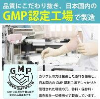GMP工場