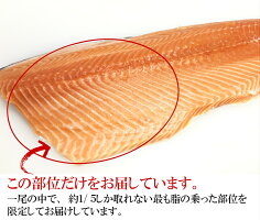 サーモンお刺身用トロサーモン500g脂がタップリのった限定部位/サーモン生/鮮魚/新鮮/さしみ