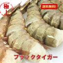ブラックタイガー 大 冷凍エビ 1.8kg/約70匹 無頭エビ エビフ...