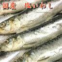 塩いわし 10匹 1.2kg イワシ 鰯 汐いわし 焼き魚 お取り寄せグルメ 国産いわし 鮮魚 真いわし