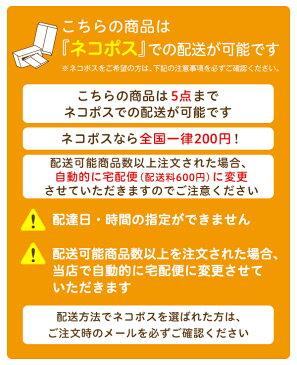 【ネコポス対応】ゴーグル用 ネームプレート 水泳用品
