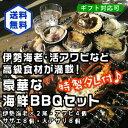 高級食材が満載!豪華なBBQセット!(伊勢海老×2尾アワビ4...
