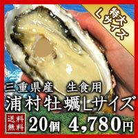水揚げされる牡蠣の中でサイズが大きめで身入りの良いものを厳選しています。水揚げされる牡蠣...