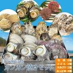 美し国伊勢志摩貝の海宝焼 鳥羽産牡蠣8個 さざえ2個 大あさり2個 あっぱ貝4個 送料無料 冷凍貝セット(牡蠣ナイフ、片手用軍手付)カンカン焼き ミニ缶入 海鮮バーベキューセット 父の日 ギフト
