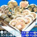 貝の海宝焼 牡蠣8個 さざえ4個 ホンビノス貝4個 ほたて片...