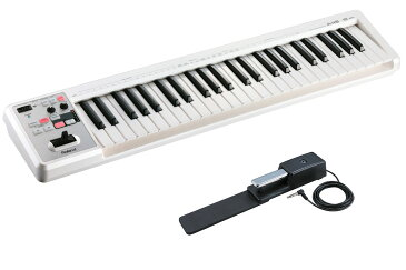 Roland ローランド / A-49 WH ホワイト 【DP-10ペダルセット!】 49鍵盤MIDIキーボード【YRK】