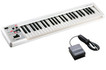 Roland ローランド / A-49 WH ホワイト 【DP-2ペダルセット!】 49鍵盤MIDIキーボード【YRK】