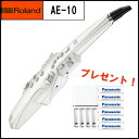 【在庫あり】Roland ローランド / Aerophone AE-10 エアロフォン《期間限定エネループ:811148900》