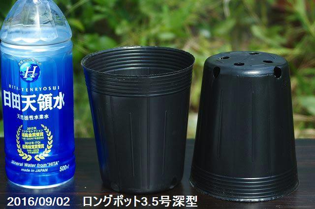 ビニールポット 通気性よくネット不要のロングポット3.5号深型(10.5cm)(角穴4ヶ底穴4ヶ) 10個【植木鉢】