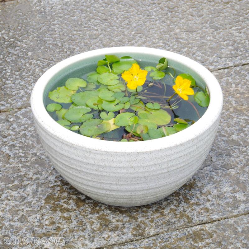 植木鉢・プランター, 植木鉢  10 30cm 16cm