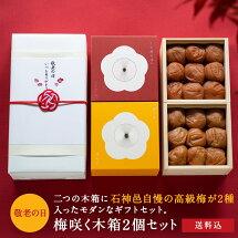梅咲く木箱2個セット(うす塩味×蜜っこ)
