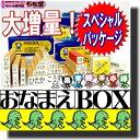 おなまえBOX★ひらがな・漢字・ローマ字セット 布用白インクとアイロン不要油性スタンプ台2個 クリーナー付 選べるフォント